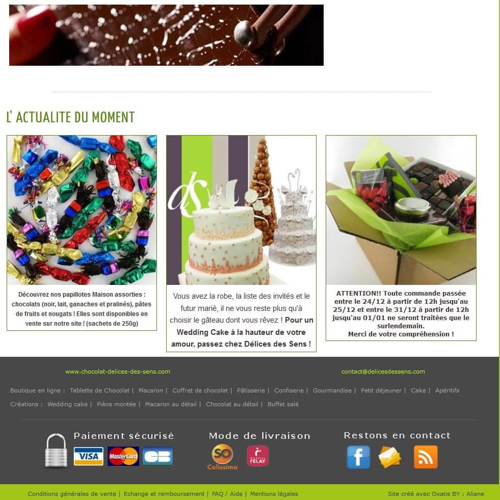 Création site e commerce vente en ligne Oxatis Lyon
